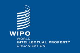 Wipo: China und USA beherrschen die künstliche Intelligenz