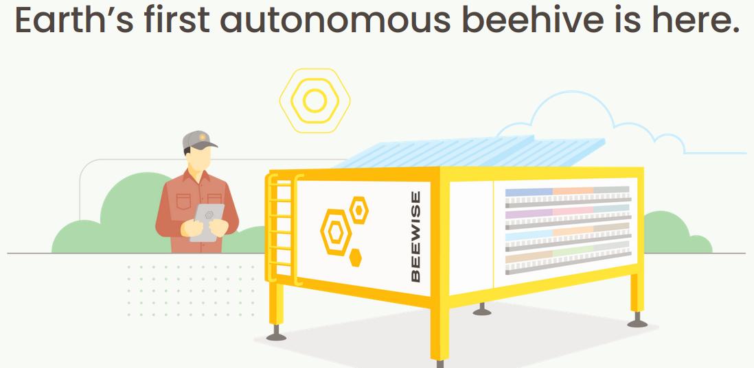 Beewise startet Verkauf von KI-Bionenstöcken